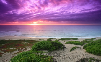 scenery magenta beach purple sky